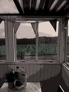rosemarys-vineyard-isle-of-wight