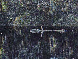 West Lake - Kent England